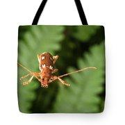 Long-horned Beetle In Flight Tote Bag