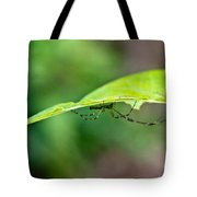 Long Leg Spider Tote Bag