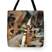 Long Tailed Skimmer 8695 3318 Tote Bag