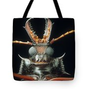 Longhorn Beetle Macrodontia Cervicornis Tote Bag