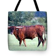 Longhorn Of Texas Tote Bag