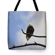 Look Up At The Eagles Tote Bag