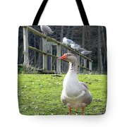 Lookin South Tote Bag