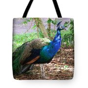 Looking For A Mate Tote Bag