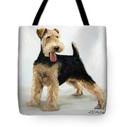 Looking For Fun Tote Bag