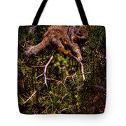 Looking For Nuts Tote Bag