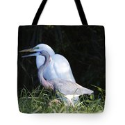 Looking For Sticks Tote Bag