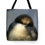 Looking Fuzzy Tote Bag