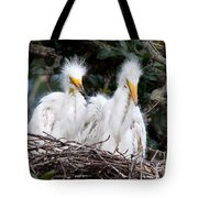 Looking Out At The World Tote Bag