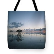 Looking Out To Sea Past Mangrove Shoots Tote Bag