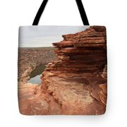 Looking Past Natures Window Tote Bag