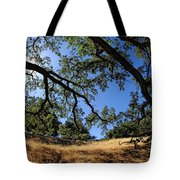 Looking Through The Oaks Tote Bag