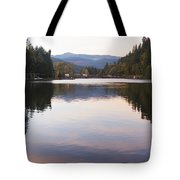 Looking Towards Leaburg Dam Tote Bag