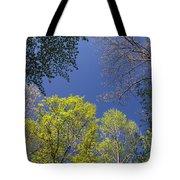 Looking Up In Spring Tote Bag