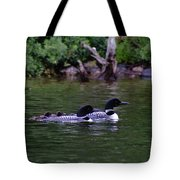 Loons With Twins 2 Tote Bag