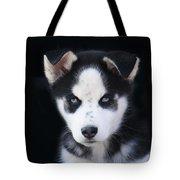 Lop Eared Siberian Husky Puppy Tote Bag