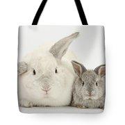 Lop Rabbits Tote Bag