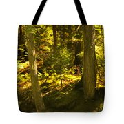 Lord Of The Rings Glacier National Park Tote Bag
