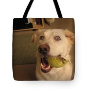 Lord Please Send Me A New Whole Ball Tote Bag