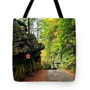 Lost In Pennsylvania 2 Tote Bag