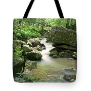 Lost Valley 2 Tote Bag by Marty Koch