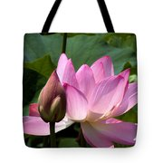 Lotus Bud--here Is How You Do It Dl065 Tote Bag