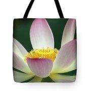 Lotus Diva Tote Bag
