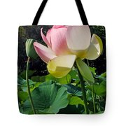 Lotus Lily Standing Tall Tote Bag