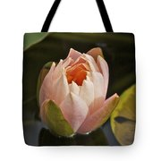 Lotus Opening 2804 Tote Bag