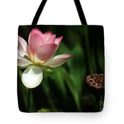 Lotus Opening To The Sun Tote Bag
