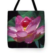 Lotus--secrets Within 24k Tote Bag