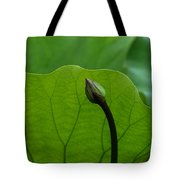 Lotus-sheltering The Future Dl032 Tote Bag