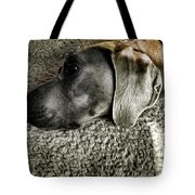 Lounging Tote Bag