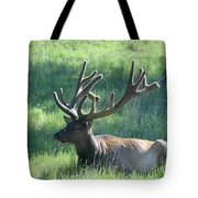 Lounging Elk Tote Bag