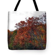 Love For Life Tote Bag