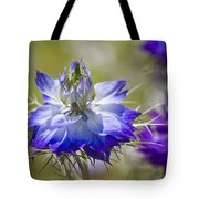 Love In The Mist - Nigella Tote Bag