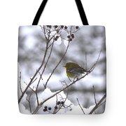 Love Some Sun Tote Bag