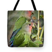 Lovebird Couple  Tote Bag