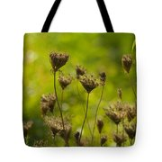 Loveliness In Death Tote Bag