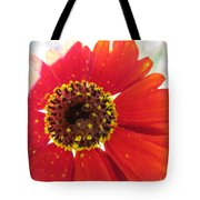 Lovely Effects Tote Bag