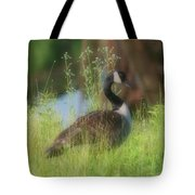 Lovely Lady Tote Bag