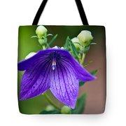 Lovely Monkshood Tote Bag