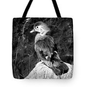 Lovely To Look At In Black And White                                                                 Tote Bag
