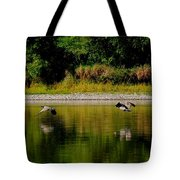 Low Gliders Tote Bag