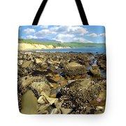 Low Tide At Gaviota Tote Bag