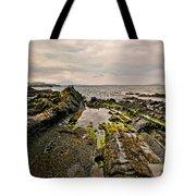 Low Tide Rocks Tote Bag