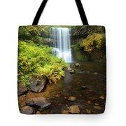 Lower South Falls Tote Bag
