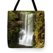 Lower South Falls At Silver Falls Tote Bag
