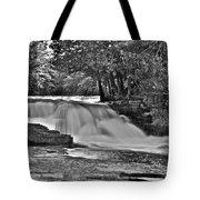 Lower Tahquamenon Falls 6140b Tote Bag