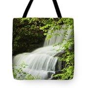 Loyalsock Waterfall Tote Bag